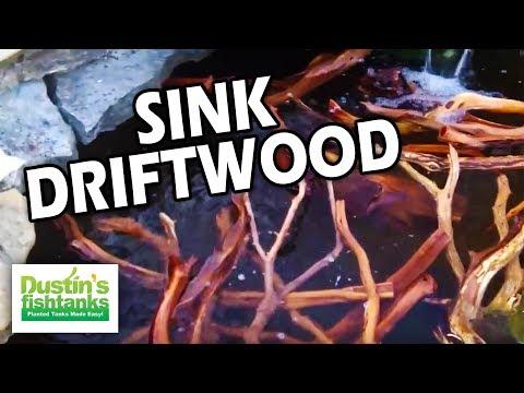 How to Sink Driftwood: Manzanita Driftwood in Aquarium