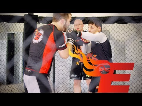 Elite MMA Progam - Mixed Martial Arts