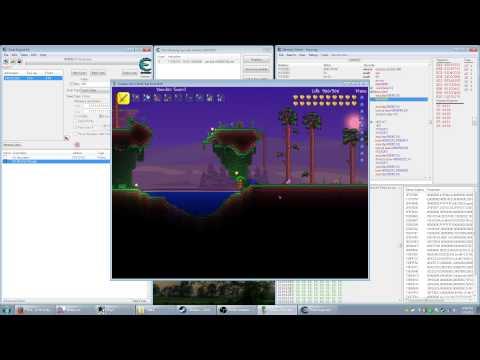 Game Hacking: AOB + Injection (Terraria)