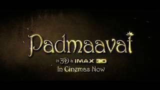 Padmaavat | In Cinemas Now | Audience Review 8