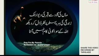 Golden Words In Urdu  # 7 maa ki ghoud sey qabar tak