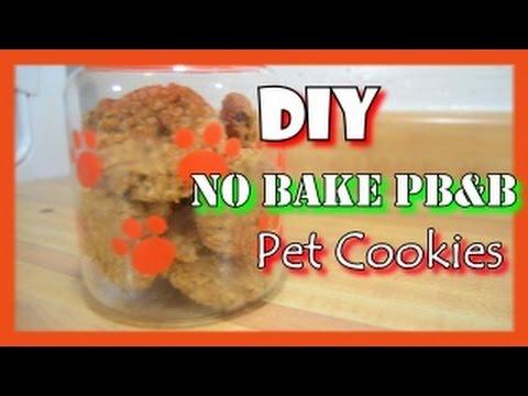 How To Make Diy No Bake Pet Cookies