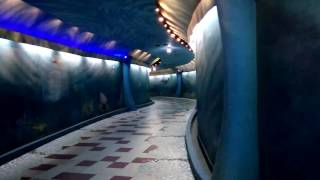 Scarry Tunnel at Amusement Park : When thinks come alive