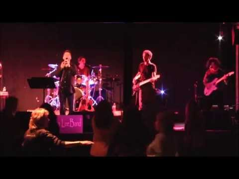 What I Like About You - The Stephen Lee Band