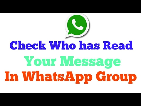 WhatsApp Tips! How To Check Who Has Read your Message in a WhatsApp Group.