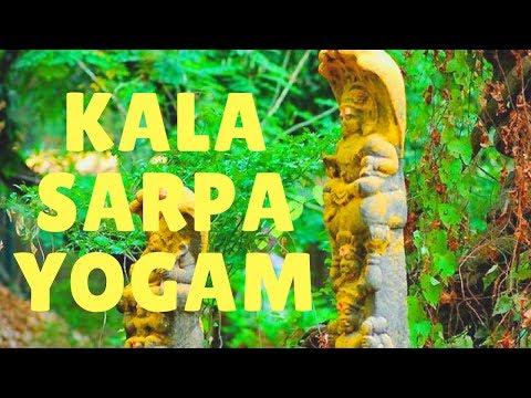 KALA SARPA YOGAM vs KALA SARPA DOSHAM -Remedies - Bharat Karma Healing