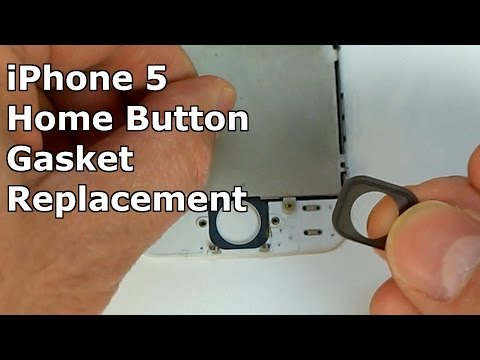 iPhone 5 Home Button Gasket Replacement