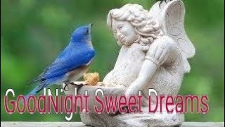 Good night|Goodnight  my sweetheart | Goodnight my love| Goodnight  whatsapp status