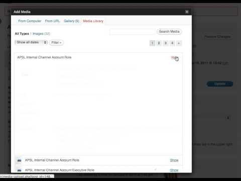 Inserting a PDF Into WordPress