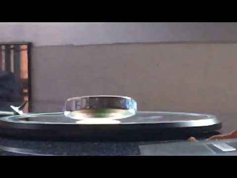 Euler's Disc Spinning on a Concave Mirror in Slow Motion