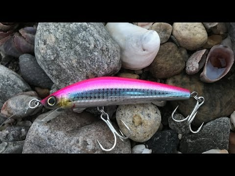 Catching Striped Bass With Pink Lures?!