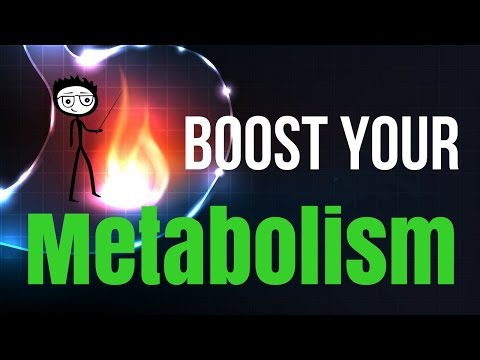 How to Boost Your Metabolism and Burn More Fat | 4 Steps