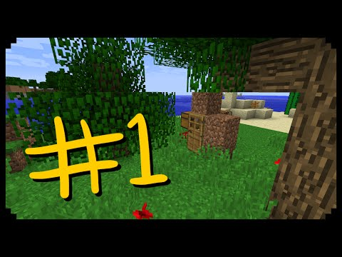 ✔ Minecraft: How to make the Cheapest Possible House (New Record?)