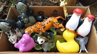 Box filled with various Zoo Animal Toys  🐧