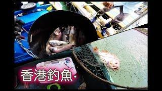 香港釣魚-青馬艇釣一點一滴