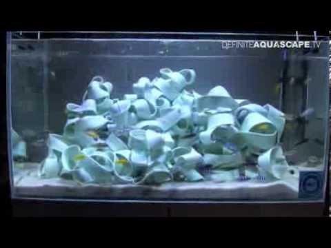 Ceramic caves for African Cichlids in aquarium