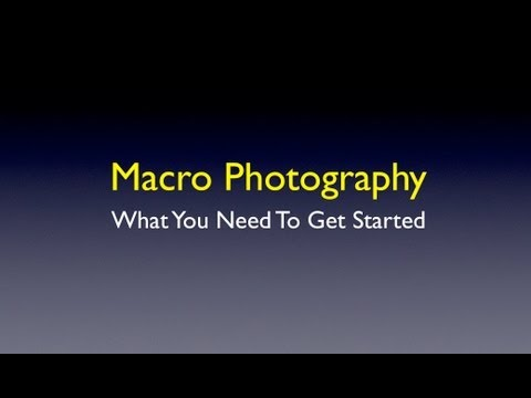 What You Need To Get Started In Macro Photography
