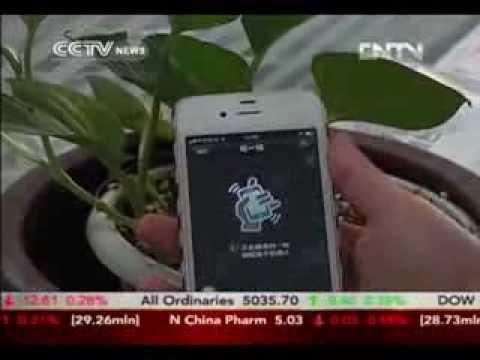 China Unicom to Offer WeChat SIM Card