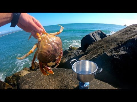Dungeness Crab Catch and Cook