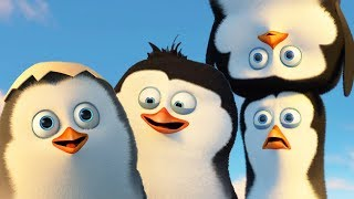 DreamWorks Madagascar   Best Penguins of Madagascar Scenes - Funny Action Moments   Kids Movies