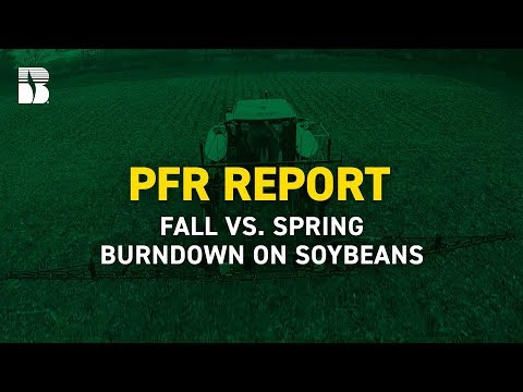 PFR Report | Fall vs. Spring Burndown on Soybeans
