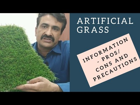 Hindi Artificial Grass Product Information (Pros and Cons)