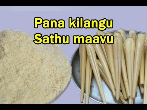 பனங்கிழங்கு சத்துகஞ்சி மாவு | Palmyra sprout Energy powder | Healthy Recipe