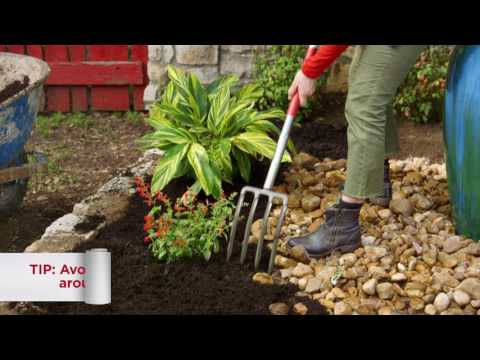 10. HOW TO MULCH A FLOWER BED