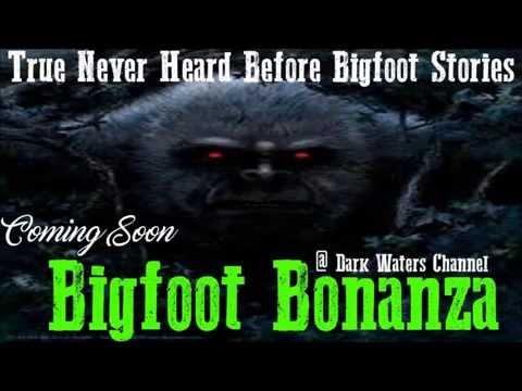 Bigfoot Bonanza | Not Too Smart | Premiere June 3rd 2016