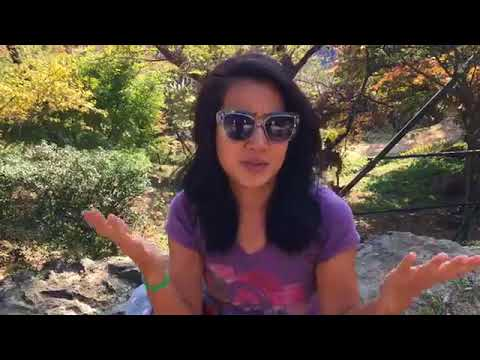 F Word Friday: Focus !  Live from a Buddhist Temple!