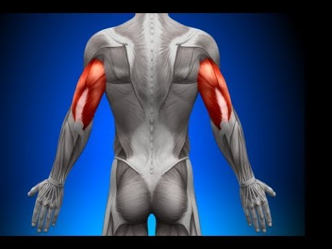 This Will Happen to Your Flabby Arms When You Do These  - How to Lose Flabby Arms Naturally