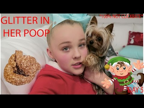 MY DOG POOPED GLITTER! - Vlogmas day 5!
