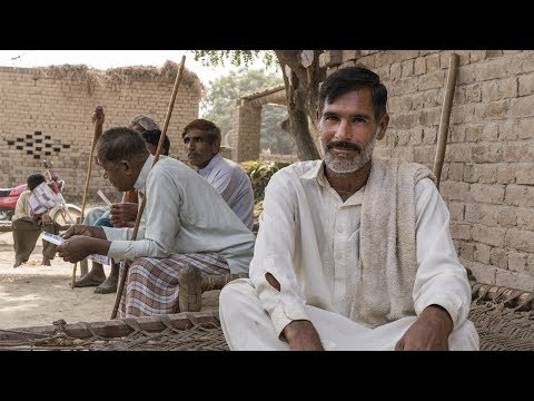Improving the lives of smallholder dairy farmers in Pakistan
