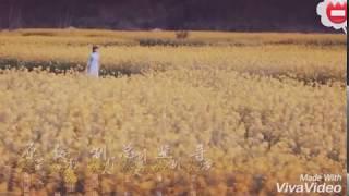Kore klip●[teri meri]