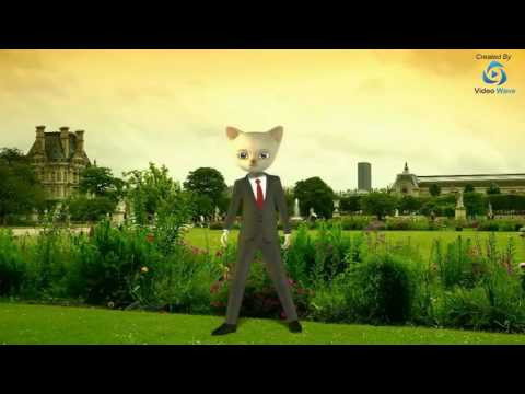 Cat 3D Character Video Made With Video Wave