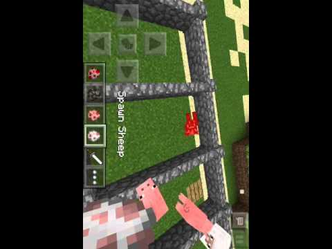 How To Breed Sheep,Cows,pigs And Chickens In MinecraftPE