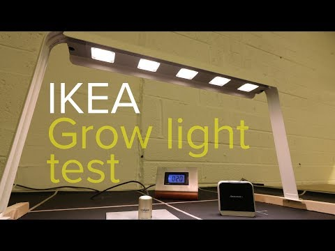Ikea grow light test - You'll be surprised!