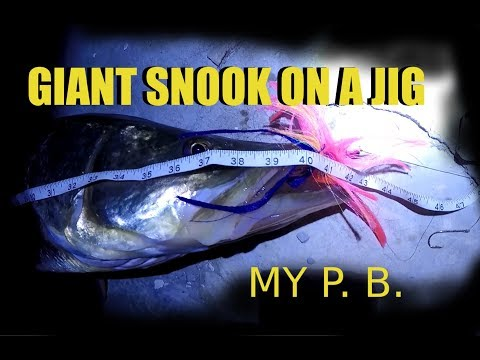 Giants on Jigs Catching Huge Snook Personal Best