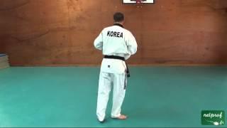Taekwondo Poomse 2