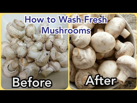 How to clean mushrooms before cooking- simple and easy
