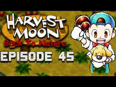 Cabbage Seeds! | Harvest Moon | Back to Nature EP.45
