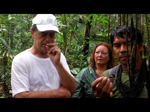 Touring and Swimming the Amazon, EcoPark and Manaus, Brazil