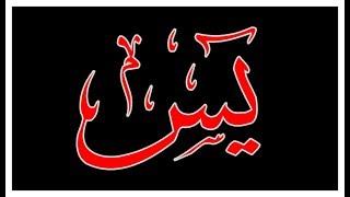Surah AR RAHMAN(the Most Gracious) سورة الرحمن - Recitiation
