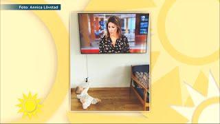 """Rania ger bebisen arga blicken : """"Neeej, det är inte på riktigt!"""" - Nyhetsmorgon (TV4)"""