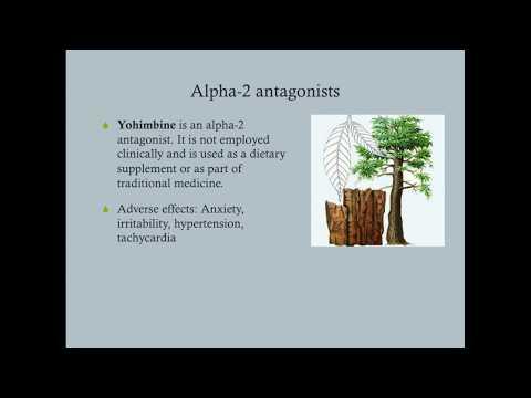 Alpha and Beta Blockers (Adrenergic Antagonists) - CRASH! Medical Review Series