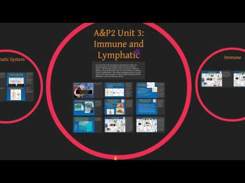 AP2 Unit 03:  Immune and Lymphatic