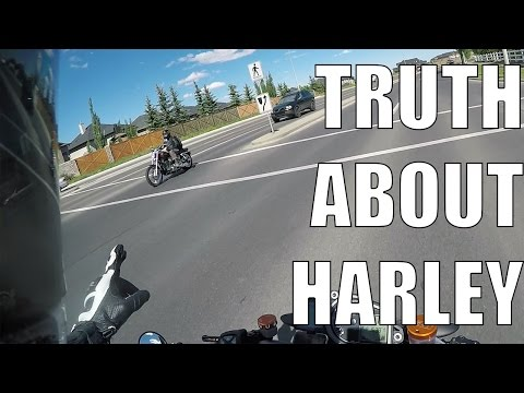 The Truth about HARLEY RIDERS