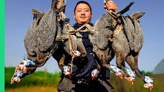 Exotic Birds TAKEOVER Wisconsin!!! Cooking HMONG Style in the Midwest!!