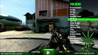 COD WAW Multiplayer Mod Menu SUMMERBASS V2 RELEASE! (GSC