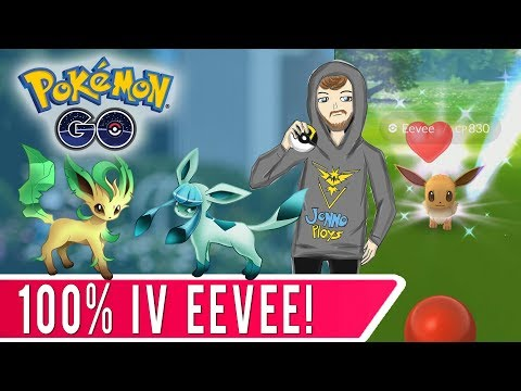 GEN 4 PREPARATION! 100% Eevee for Glaceon or Leafeon Evolution!